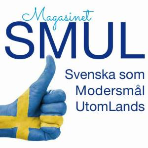 IDbild_MagSMUL